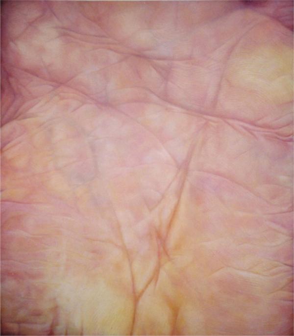 « Paume gauche  » acrylique et pastel sur toile (200/176cm) 2002